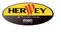 Logo herwey studios