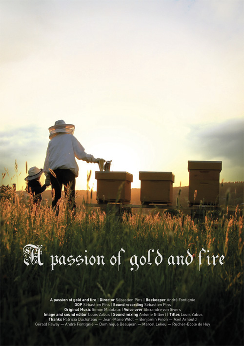 A passion of gold and fire Bi