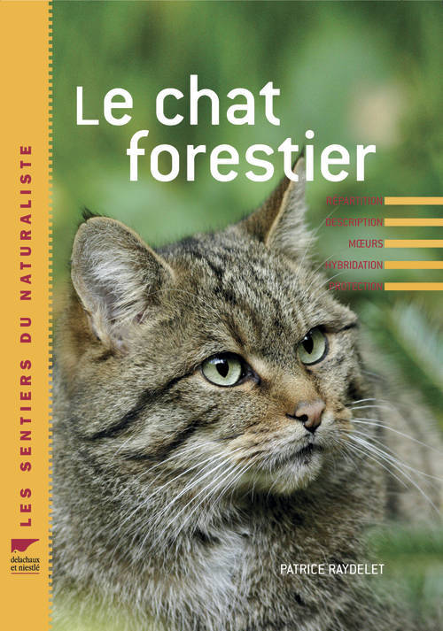Le chat forestier Patrice Raydellet