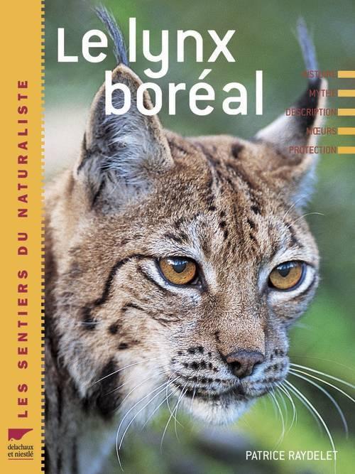 Le Lynx boréal Patrice Raydellet