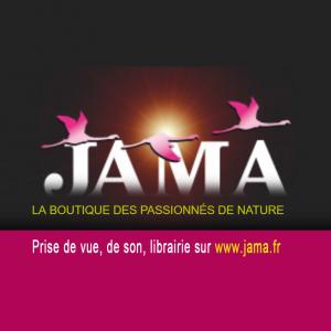 LOGO JAMA site