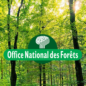 Office national des for ts festival nature ain - Office national des foret ...