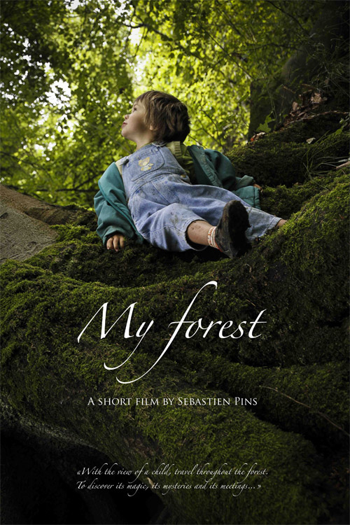 Poster My forest