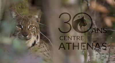 centre-athenas-w1
