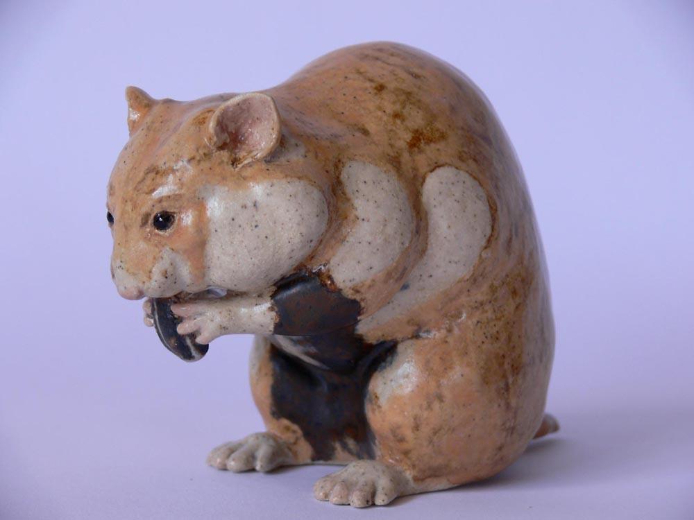 louise-midgley-hamster