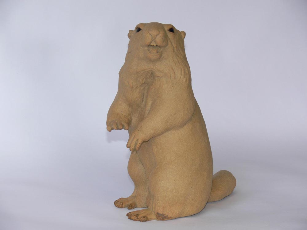 louise-midgley-marmotte