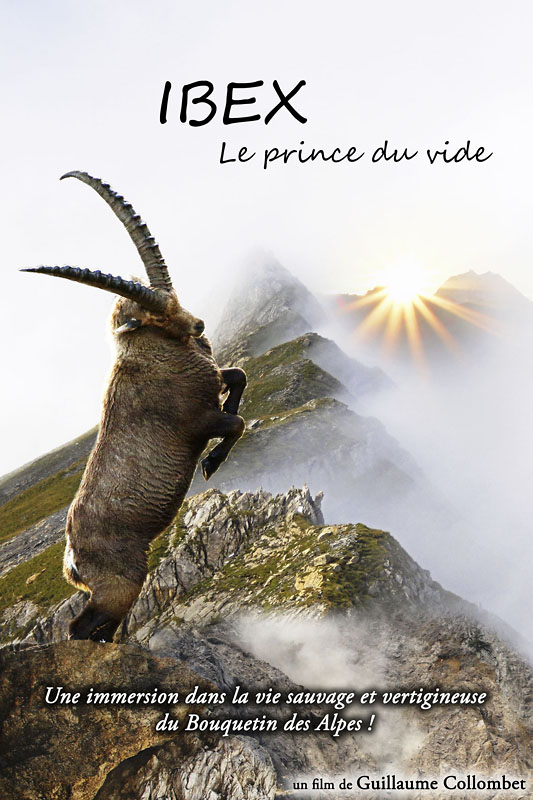 Collombet Guillaume affiche ibex 800