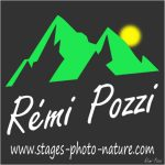 remi-pozzi-logo-pro-vignette